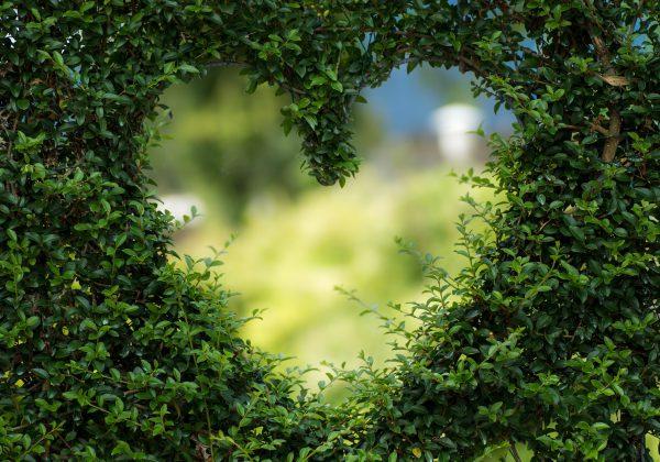5 רעיונות ליום האהבה הקרוב