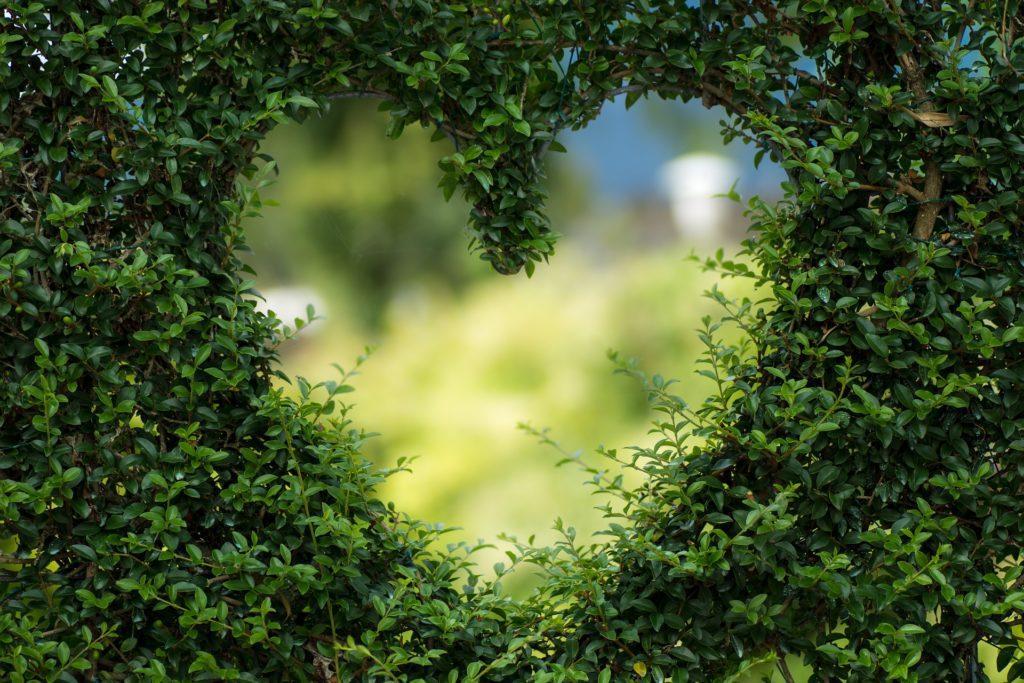 5 רעיונות ליום האהבה.
